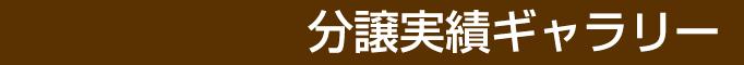 埼玉の新築一戸建て・デザイナーズハウス・土地をお探しの方はロイズホームにお任せ下さい。